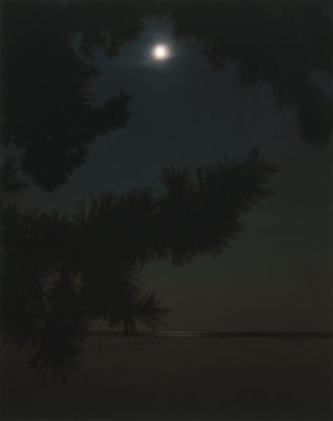 古松月夜図(一)