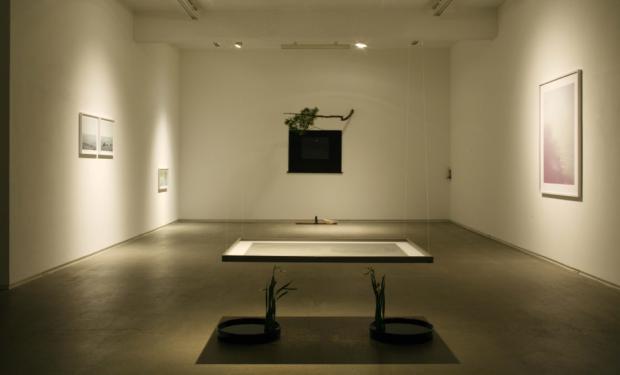 室礼-朧-(生花・片桐功敦) hiromiyoshii/(東京)2008