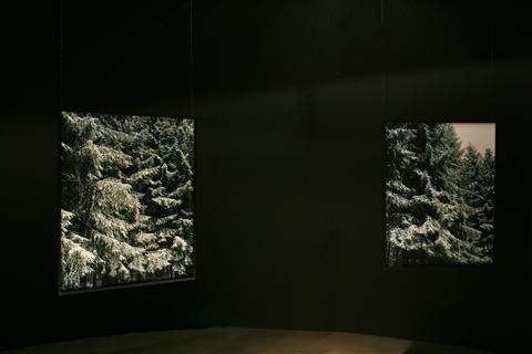 「See Bach See #8」「See Bach See #9」メルシャン軽井沢美術館/長野 2009