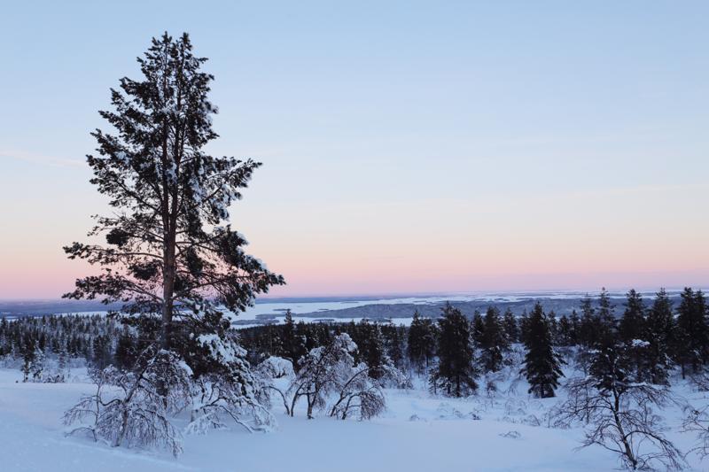 フィンランド冬